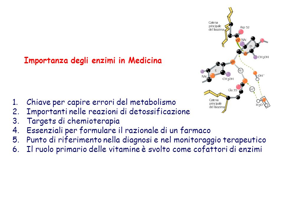 Importanza degli enzimi in Medicina 1.Chiave per capire errori del metabolismo 2.Importanti nelle reazioni di detossificazione 3.Targets di chemiotera