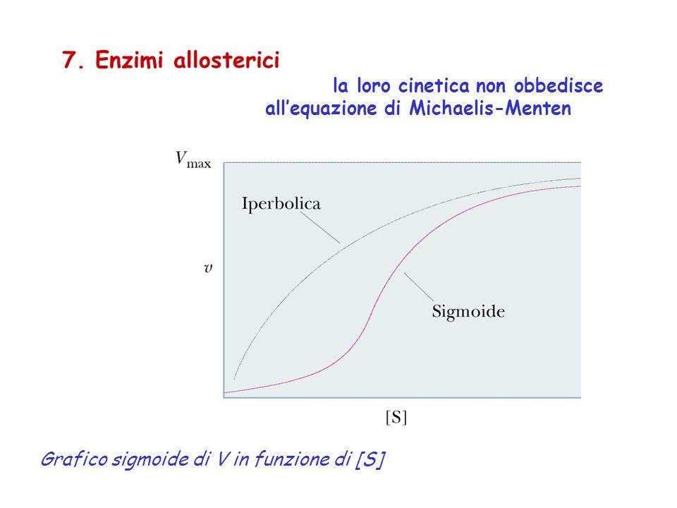 7. Enzimi allosterici la loro cinetica non obbedisce allequazione di Michaelis-Menten Grafico sigmoide di V in funzione di [S]
