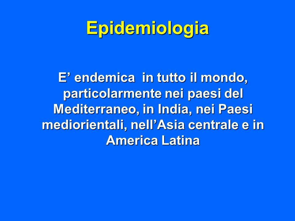 Epidemiologia E endemica in tutto il mondo, particolarmente nei paesi del Mediterraneo, in India, nei Paesi mediorientali, nellAsia centrale e in Amer