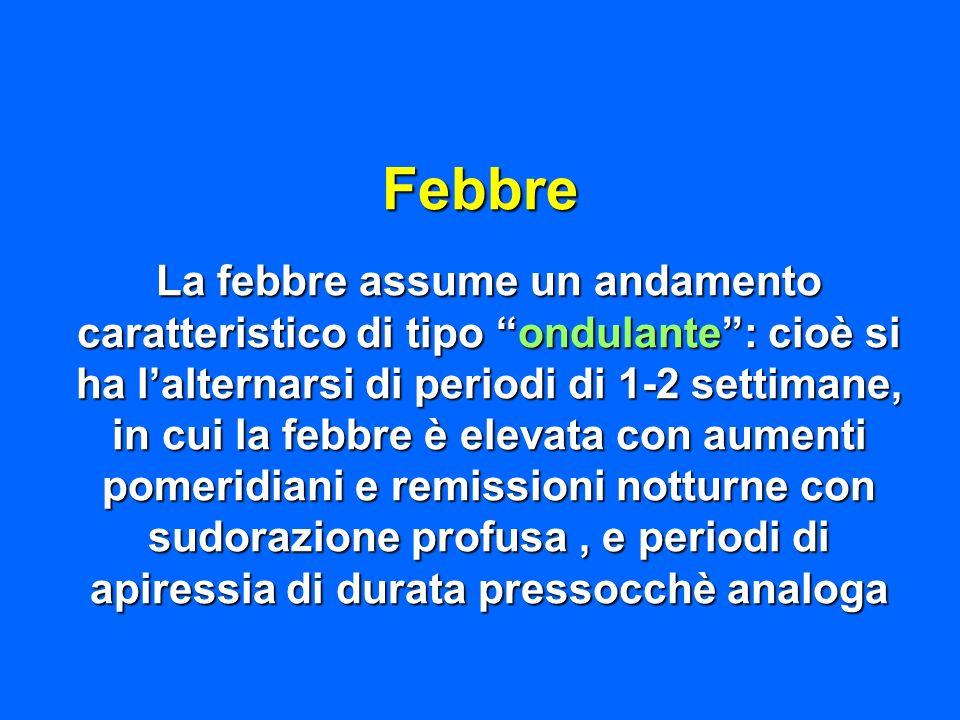Febbre La febbre assume un andamento caratteristico di tipo ondulante: cioè si ha lalternarsi di periodi di 1-2 settimane, in cui la febbre è elevata