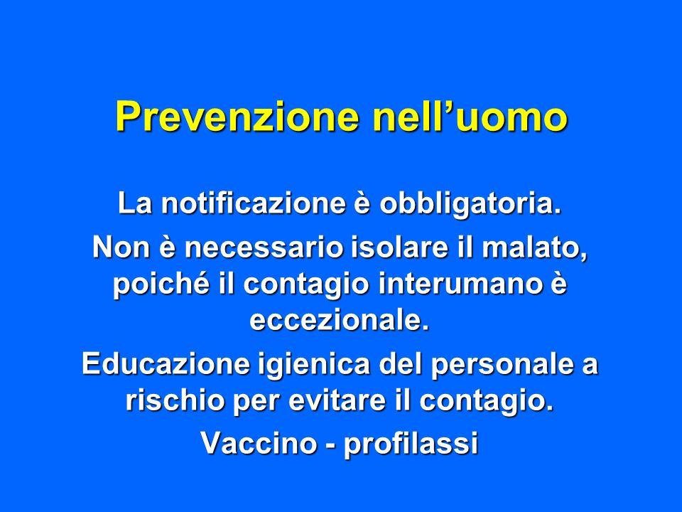 Prevenzione nelluomo La notificazione è obbligatoria. Non è necessario isolare il malato, poiché il contagio interumano è eccezionale. Educazione igie