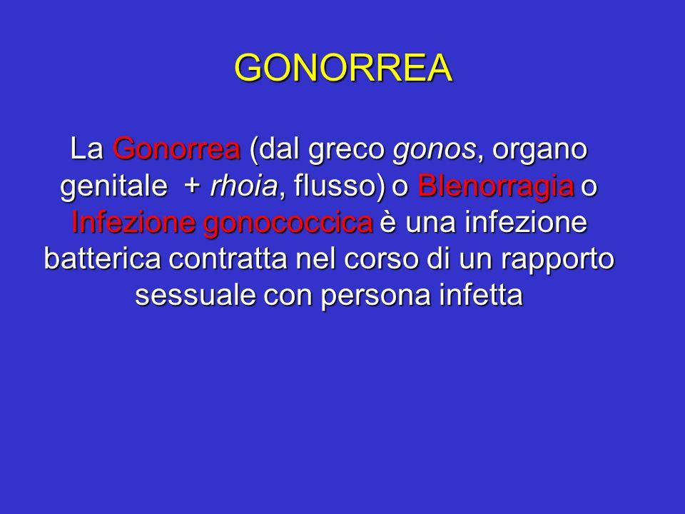 GONORREA La Gonorrea (dal greco gonos, organo genitale + rhoia, flusso) o Blenorragia o Infezione gonococcica è una infezione batterica contratta nel