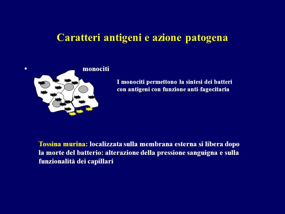Caratteri antigeni e azione patogena monociti I monociti permettono la sintesi dei batteri con antigeni con funzione anti-fagocitaria Tossina murina: