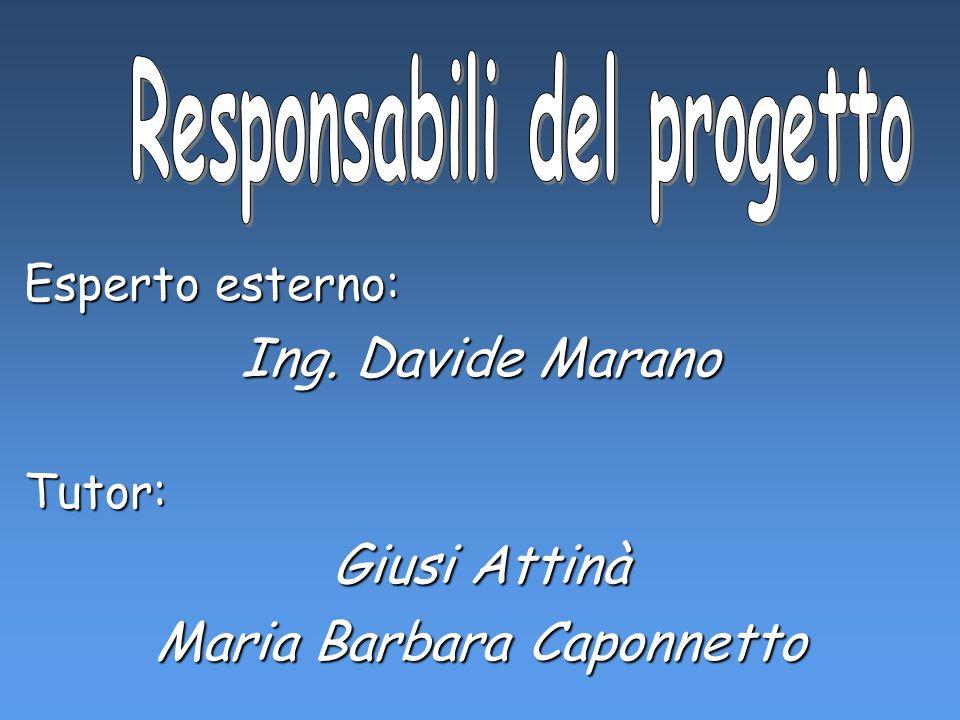 Esperto esterno: Ing. Davide Marano Tutor: Giusi Attinà Maria Barbara Caponnetto