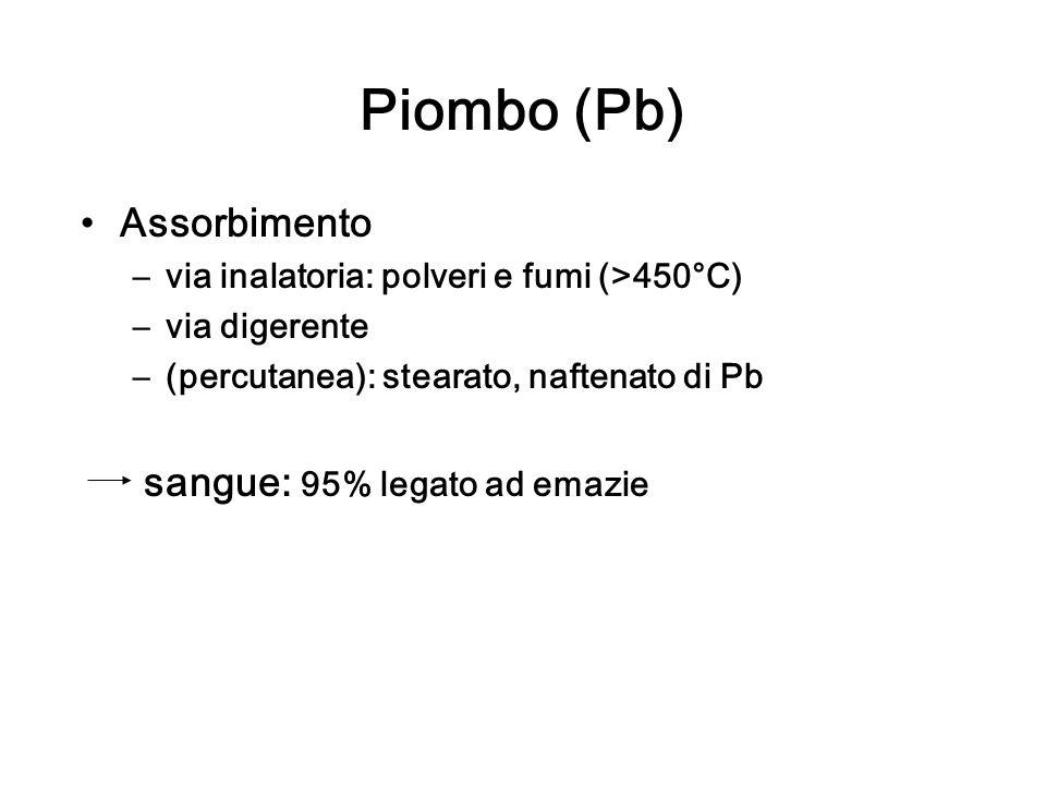 Piombo (Pb) Assorbimento –via inalatoria: polveri e fumi (>450°C) –via digerente –(percutanea): stearato, naftenato di Pb sangue: 95% legato ad emazie