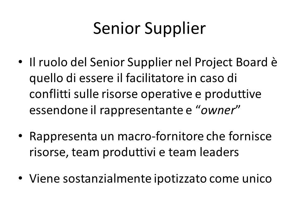 Senior Supplier Il ruolo del Senior Supplier nel Project Board è quello di essere il facilitatore in caso di conflitti sulle risorse operative e produ