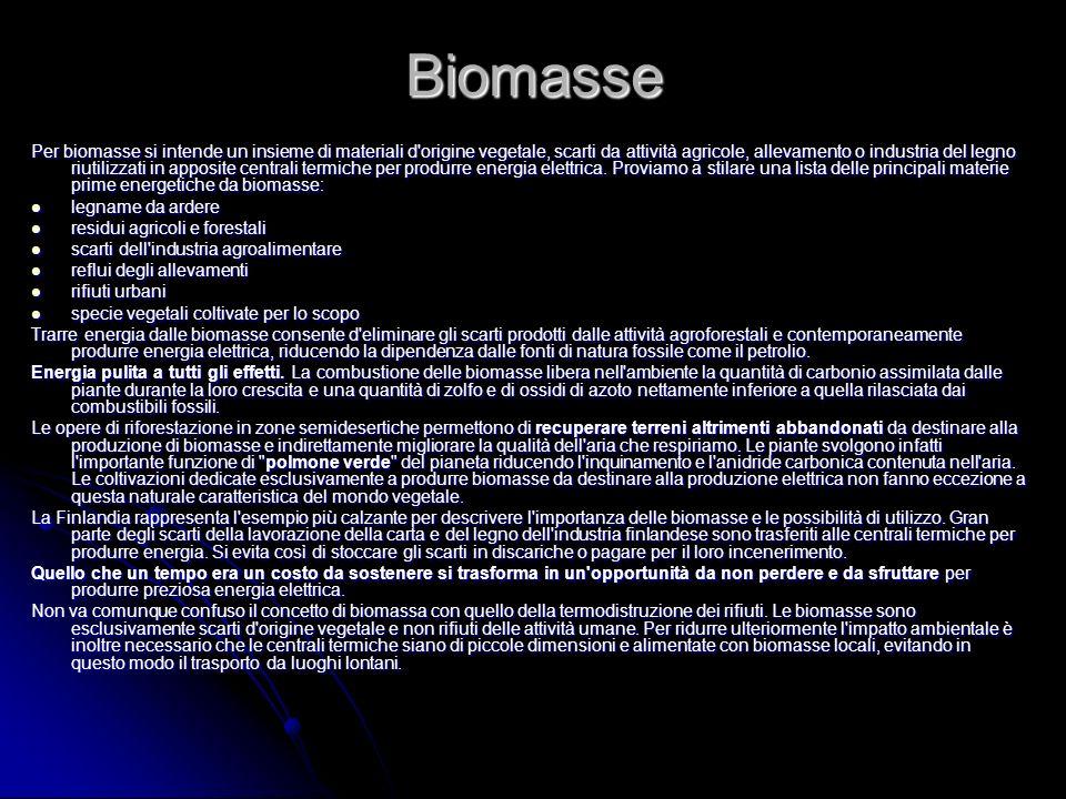 Biomasse Per biomasse si intende un insieme di materiali d'origine vegetale, scarti da attività agricole, allevamento o industria del legno riutilizza