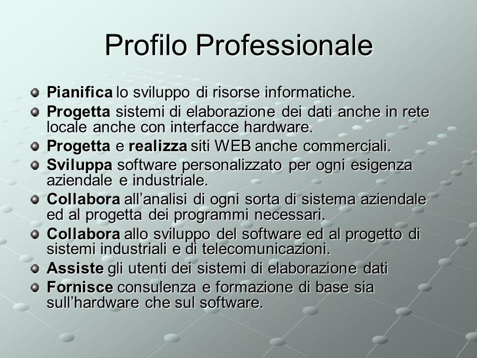 Profilo Professionale Pianifica lo sviluppo di risorse informatiche.