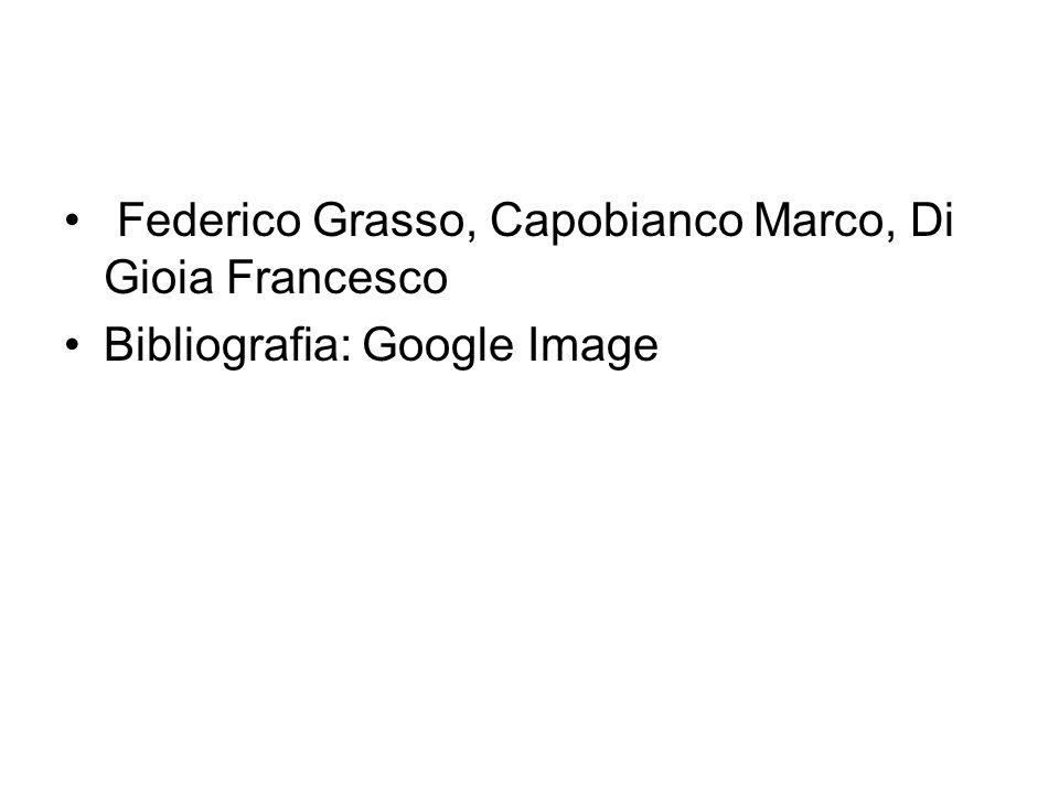 Federico Grasso, Capobianco Marco, Di Gioia Francesco Bibliografia: Google Image