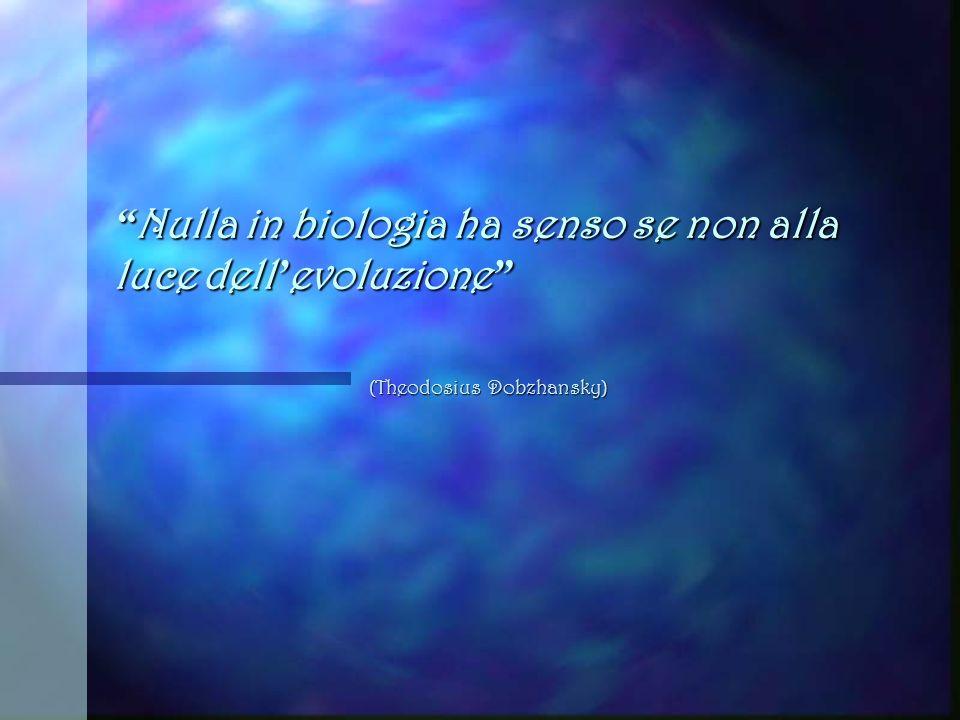 ITIS G. Galilei - Livorno L Altra Evoluzione Percorso di lezioni tenute dai docenti Rossella Lombardo e Federico Agen a.s 2011-12 Classi 3e Biologico-