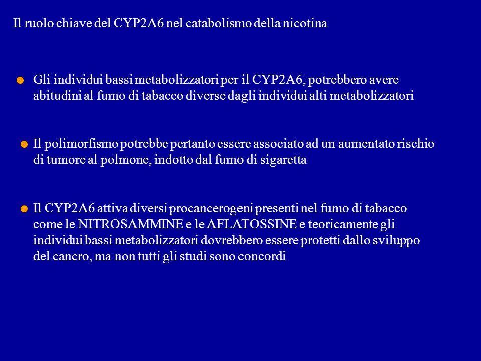 Il ruolo chiave del CYP2A6 nel catabolismo della nicotina Gli individui bassi metabolizzatori per il CYP2A6, potrebbero avere abitudini al fumo di tab