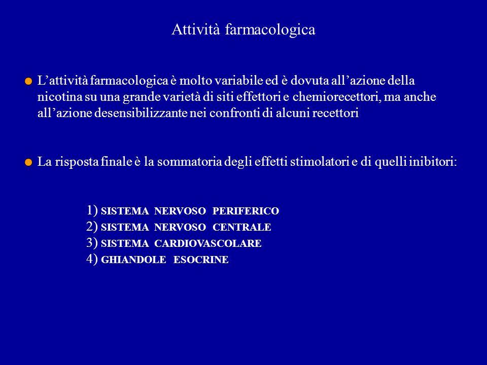 Attività farmacologica Lattività farmacologica è molto variabile ed è dovuta allazione della nicotina su una grande varietà di siti effettori e chemio