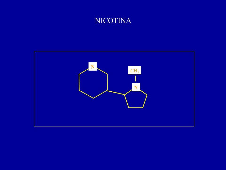 NICOTINA N N CH 3