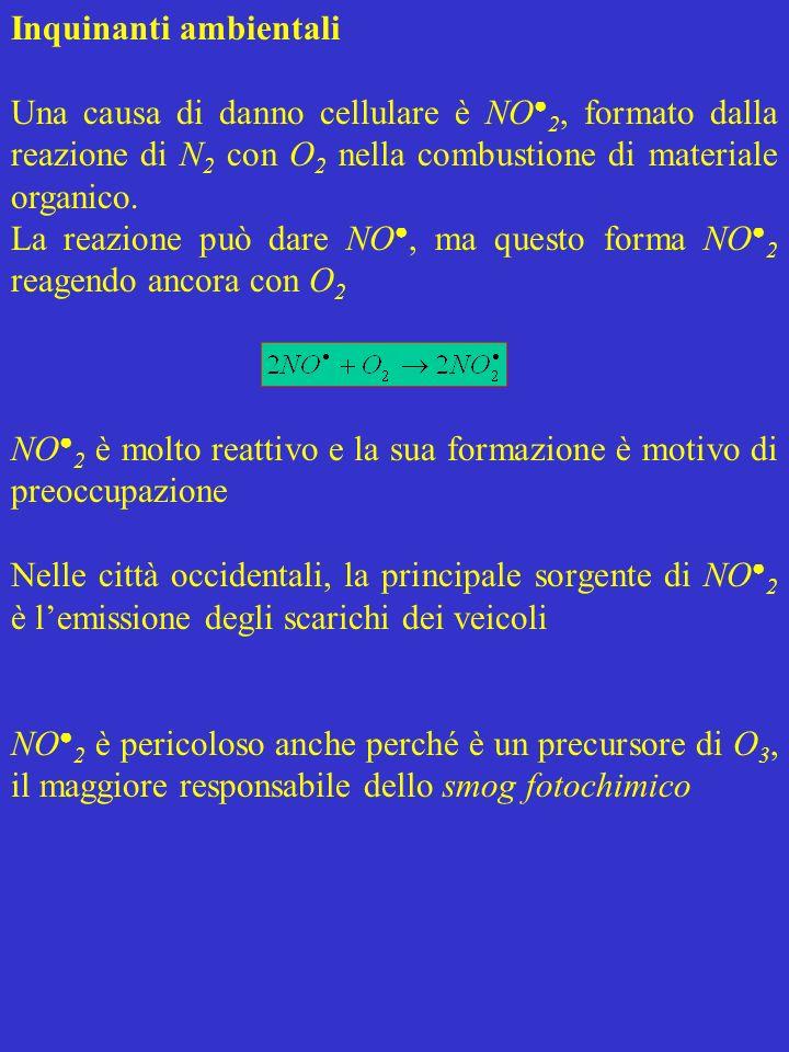 Inquinanti ambientali Una causa di danno cellulare è NO 2, formato dalla reazione di N 2 con O 2 nella combustione di materiale organico. La reazione