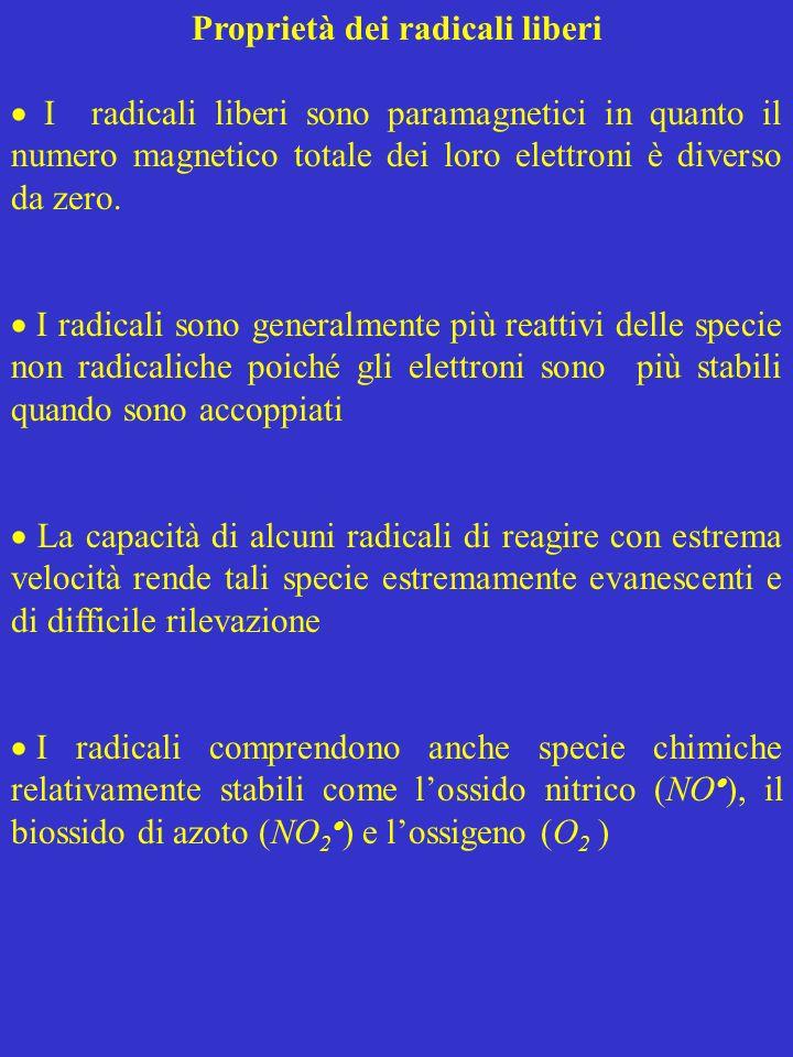 Proprietà dei radicali liberi I radicali liberi sono paramagnetici in quanto il numero magnetico totale dei loro elettroni è diverso da zero. I radica