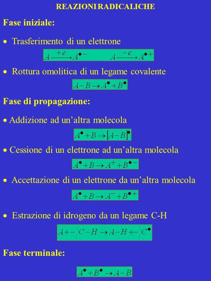 REAZIONI RADICALICHE Fase iniziale: Trasferimento di un elettrone Rottura omolitica di un legame covalente Fase di propagazione: Addizione ad unaltra