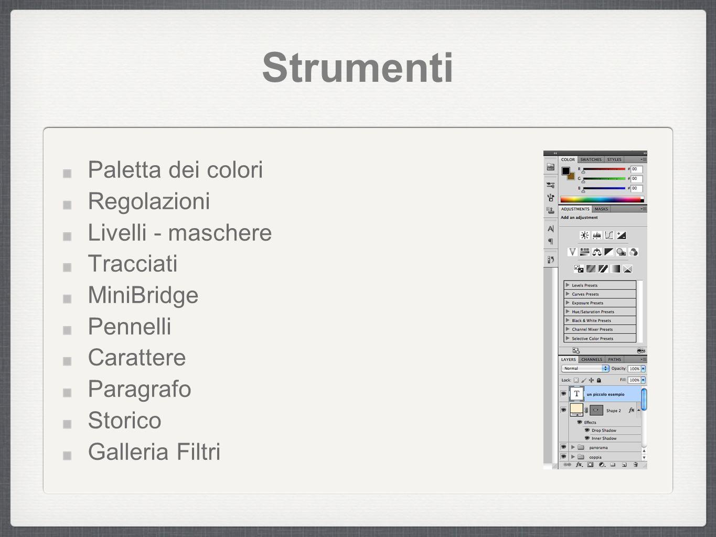 Canali di colore Bitmap Scala di Grigio RGB CMYK HSL