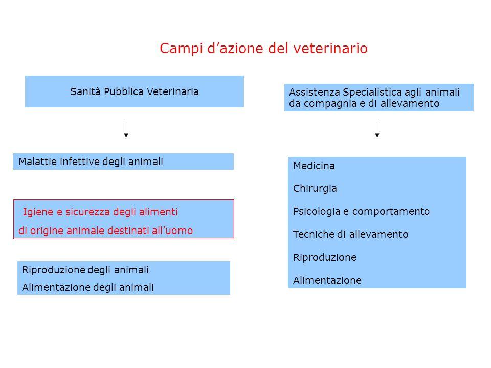 Campi dazione del veterinario Malattie infettive degli animali Igiene e sicurezza degli alimenti di origine animale destinati alluomo Riproduzione deg