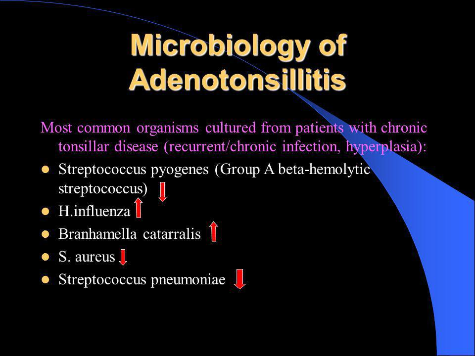 Microbiology of Adenotonsillitis Most common organisms cultured from patients with chronic tonsillar disease (recurrent/chronic infection, hyperplasia