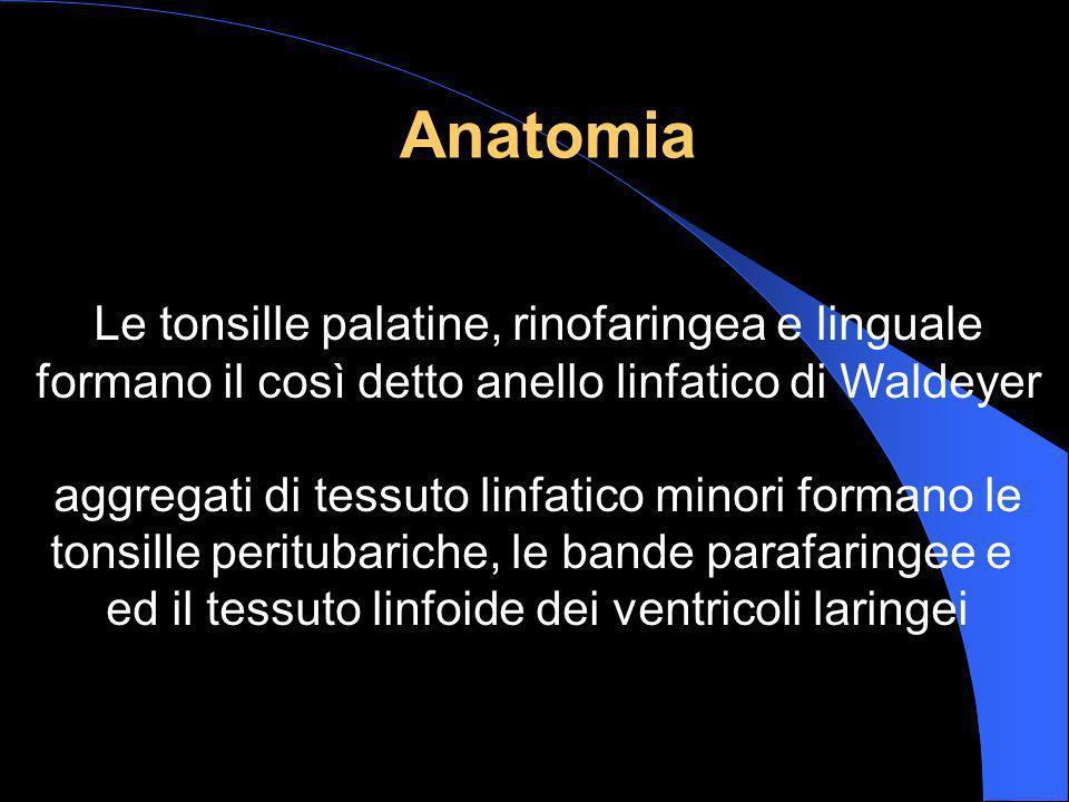 Anatomia Le tonsille palatine, rinofaringea e linguale formano il così detto anello linfatico di Waldeyer aggregati di tessuto linfatico minori forman