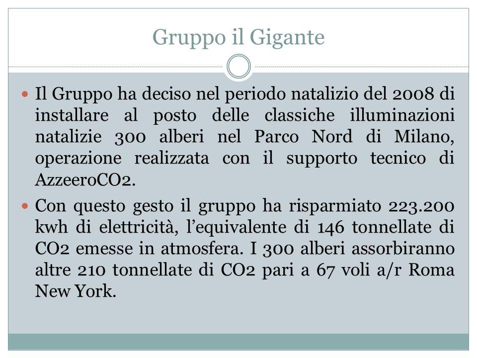 Gruppo il Gigante Il Gruppo ha deciso nel periodo natalizio del 2008 di installare al posto delle classiche illuminazioni natalizie 300 alberi nel Parco Nord di Milano, operazione realizzata con il supporto tecnico di AzzeeroCO2.