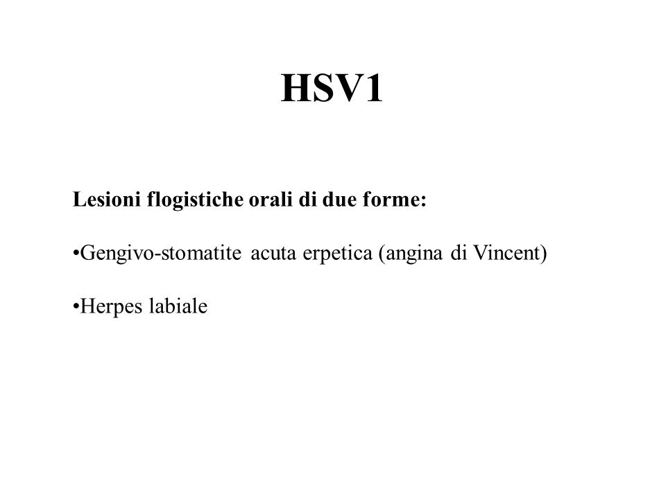 CD 20 EBV