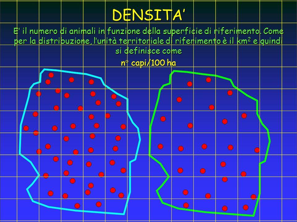 E il numero di animali in funzione della superficie di riferimento. Come per la distribuzione, lunità territoriale di riferimento è il km 2 e quindi s