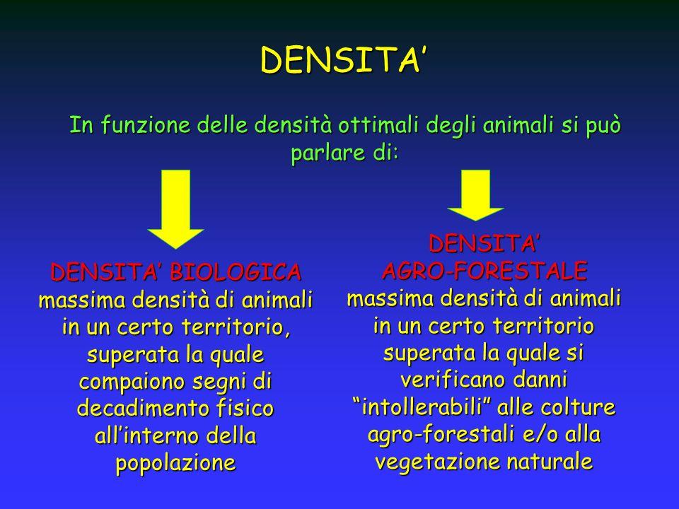 In funzione delle densità ottimali degli animali si può parlare di: DENSITA DENSITA BIOLOGICA massima densità di animali in un certo territorio, super
