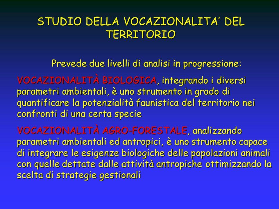 STUDIO DELLA VOCAZIONALITA DEL TERRITORIO Prevede due livelli di analisi in progressione Prevede due livelli di analisi in progressione: VOCAZIONALITÀ