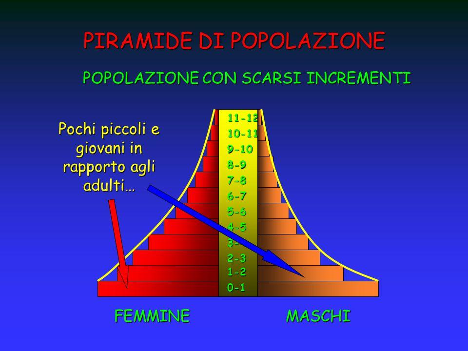 PIRAMIDE DI POPOLAZIONE 0-1 1-2 2-3 3-4 4-5 5-6 6-7 7-8 8-9 9-10 10-11 11-12 FEMMINEMASCHI POPOLAZIONE CON SCARSI INCREMENTI Pochi piccoli e giovani i