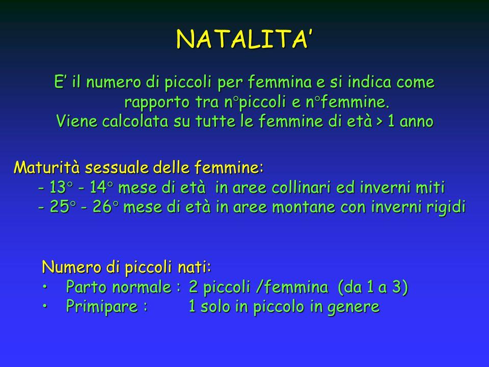 E il numero di piccoli per femmina e si indica come rapporto tra n°piccoli e n°femmine. Viene calcolata su tutte le femmine di età > 1 anno Maturità s