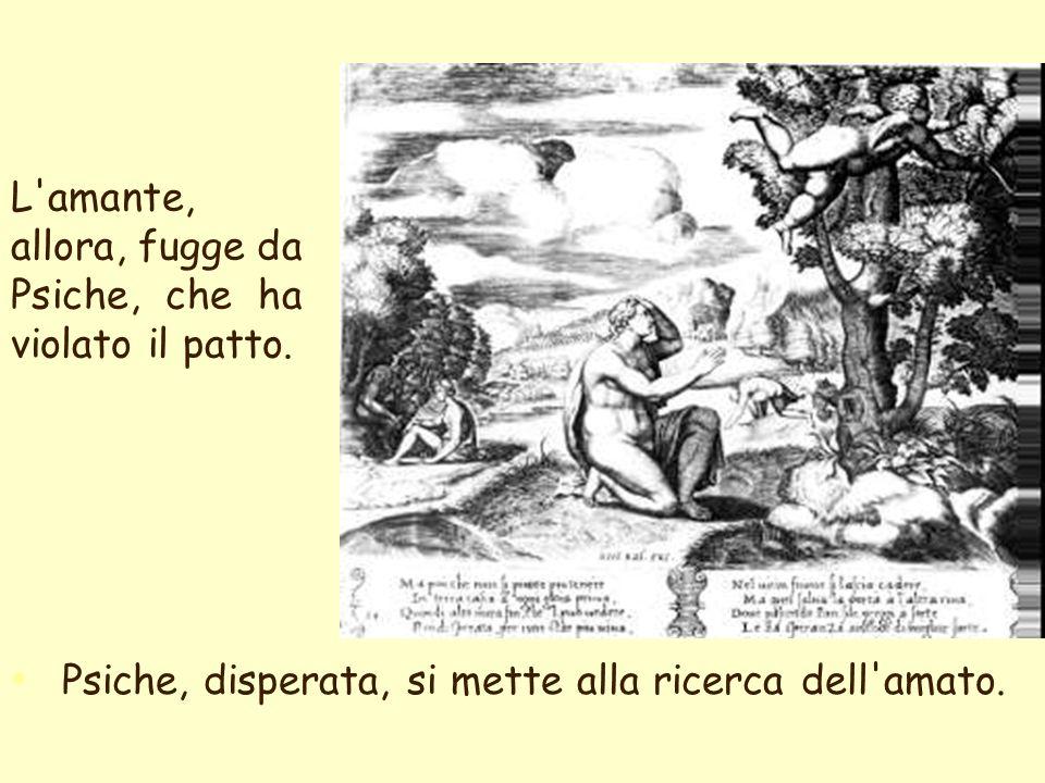 elenarovelli37 Deve affrontare l ira di Venere, che sfoga la sua gelosia imponendole di superare quattro difficilissime prove
