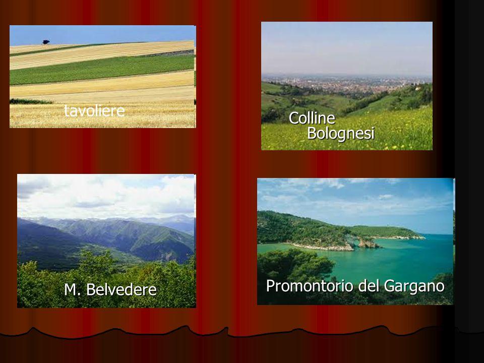 Idrografia Fiumi: Fortore, Ofanto, Candelaro e Cervaro.