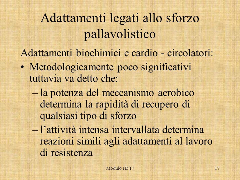Modulo 1D 1°17 Adattamenti legati allo sforzo pallavolistico Adattamenti biochimici e cardio - circolatori: Metodologicamente poco significativi tutta