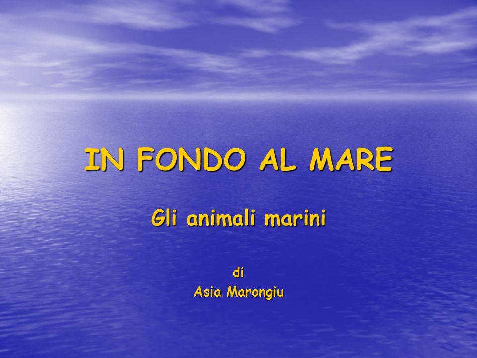 IN FONDO AL MARE Gli animali marini di Asia Marongiu