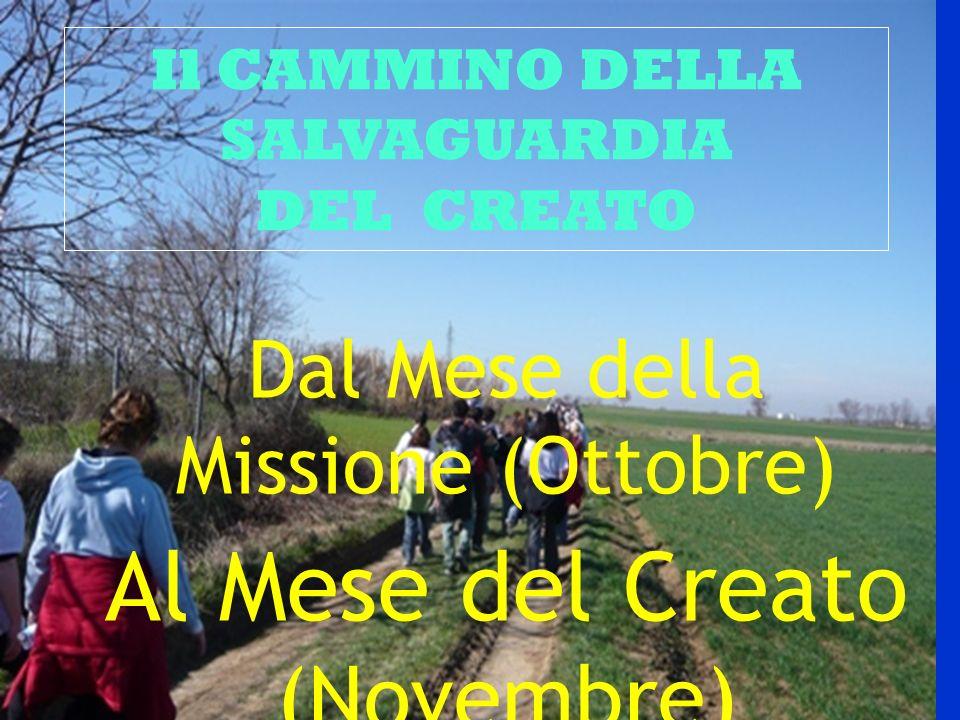 Il CAMMINO DELLA SALVAGUARDIA DEL CREATO Dal Mese della Missione (Ottobre) Al Mese del Creato (Novembre)