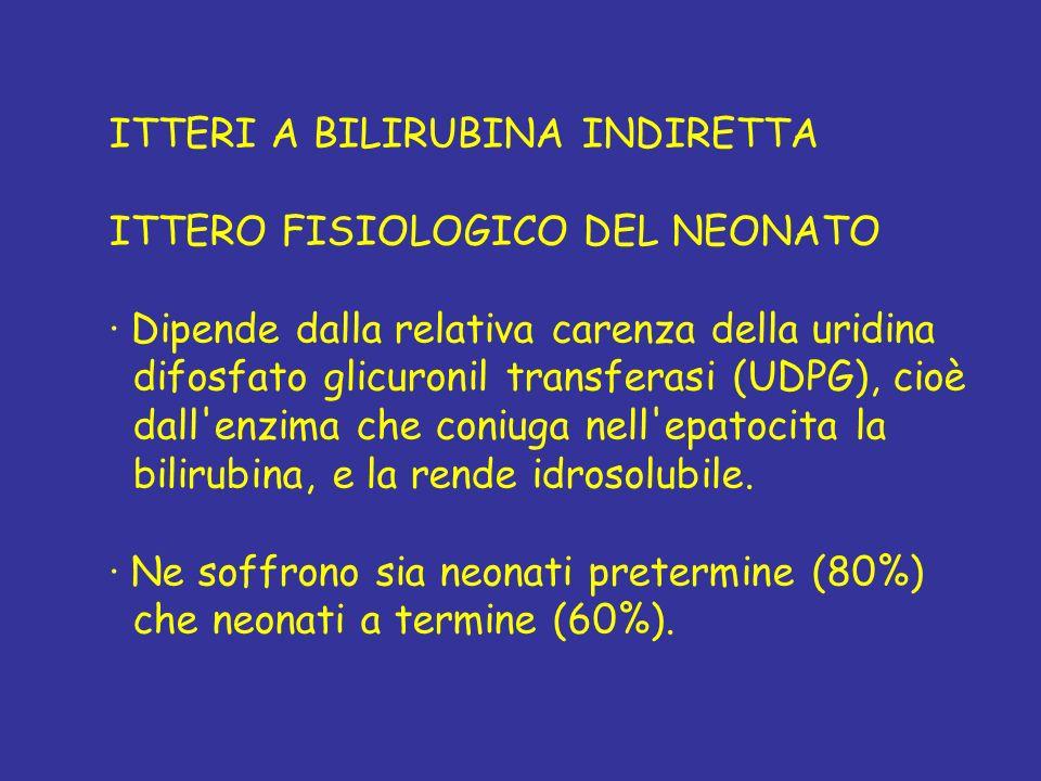ITTERI A BILIRUBINA INDIRETTA ITTERO FISIOLOGICO DEL NEONATO · Dipende dalla relativa carenza della uridina difosfato glicuronil transferasi (UDPG), c