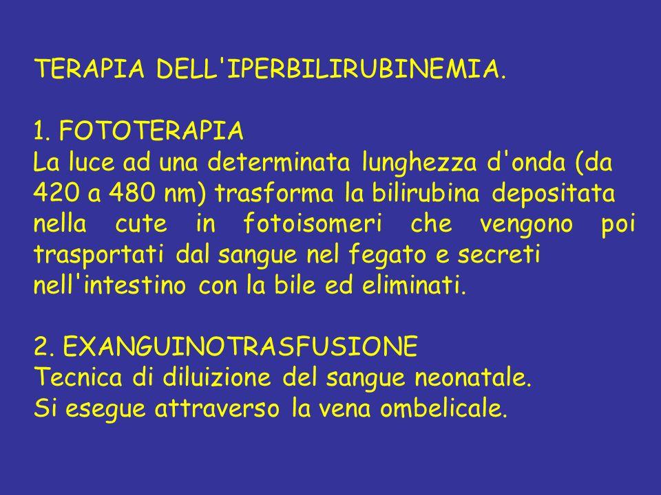 TERAPIA DELL'IPERBILIRUBINEMIA. 1. FOTOTERAPIA La luce ad una determinata lunghezza d'onda (da 420 a 480 nm) trasforma la bilirubina depositata nella