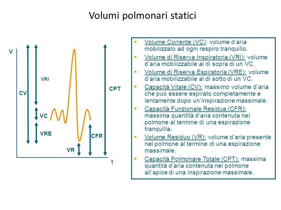 CPT V CV VRI VRE VR CFR VC t Volumi polmonari statici Volume Corrente (VC): volume daria mobilizzato ad ogni respiro tranquillo. Volume di Riserva Ins
