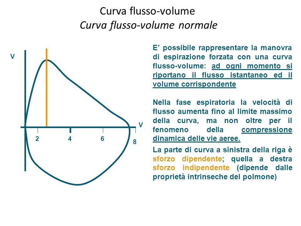 Curva flusso-volume Curva flusso-volume normale E possibile rappresentare la manovra di espirazione forzata con una curva flusso-volume: ad ogni momen