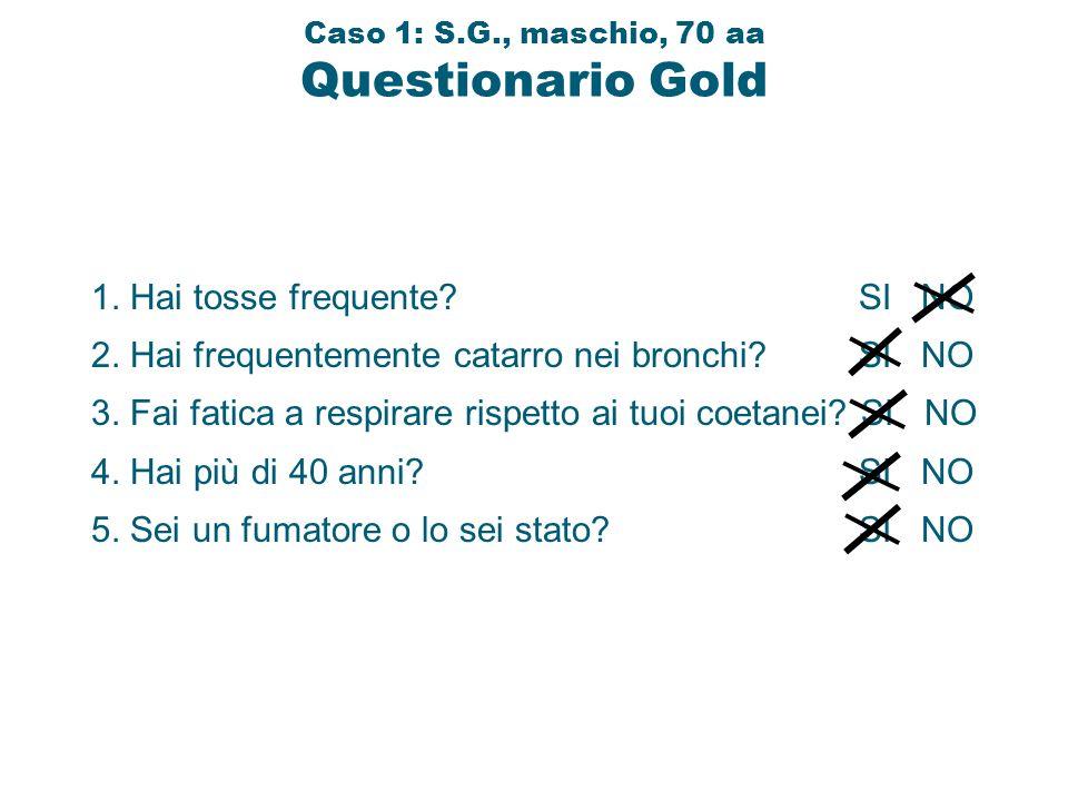 Caso 1: S.G., maschio, 70 aa Questionario Gold 1. Hai tosse frequente? SI NO 2. Hai frequentemente catarro nei bronchi? SI NO 3. Fai fatica a respirar