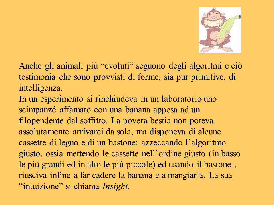 Anche gli animali più evoluti seguono degli algoritmi e ciò testimonia che sono provvisti di forme, sia pur primitive, di intelligenza. In un esperime