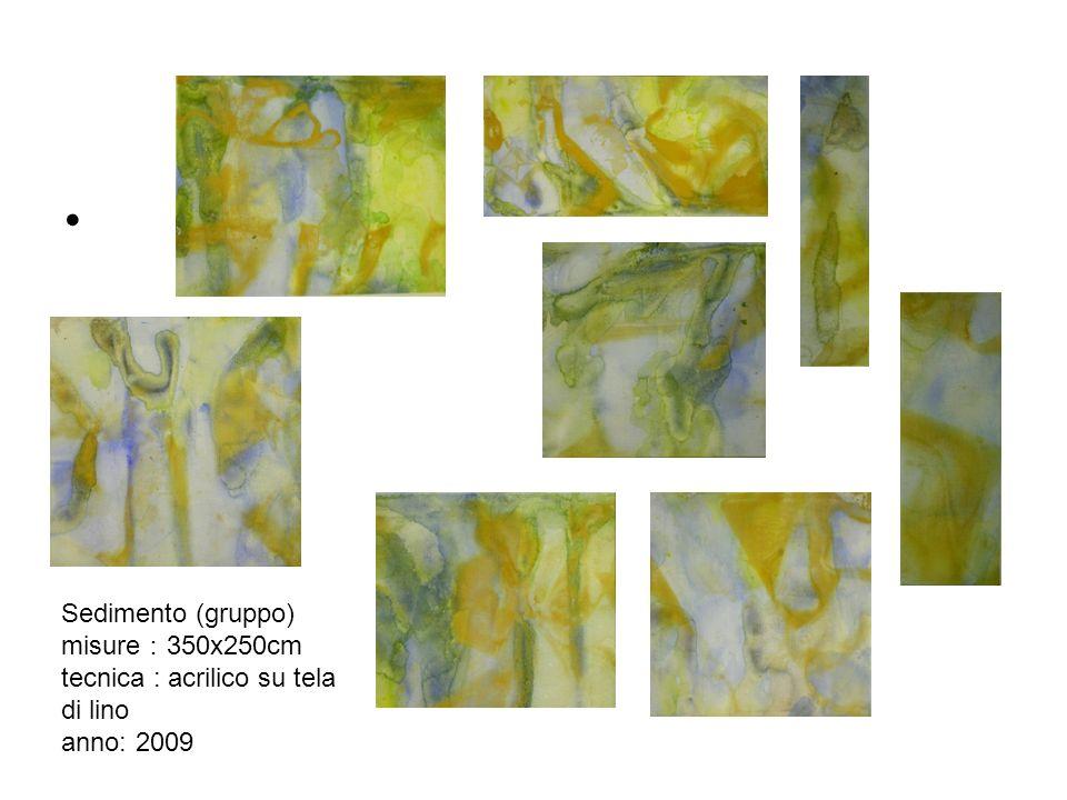 Sedimento (gruppo) misure 350x250cm tecnica : acrilico su tela di lino anno: 2009