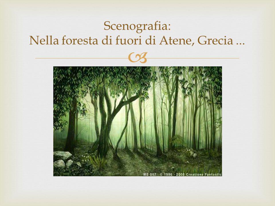 Scenografia: Nella foresta di fuori di Atene, Grecia...
