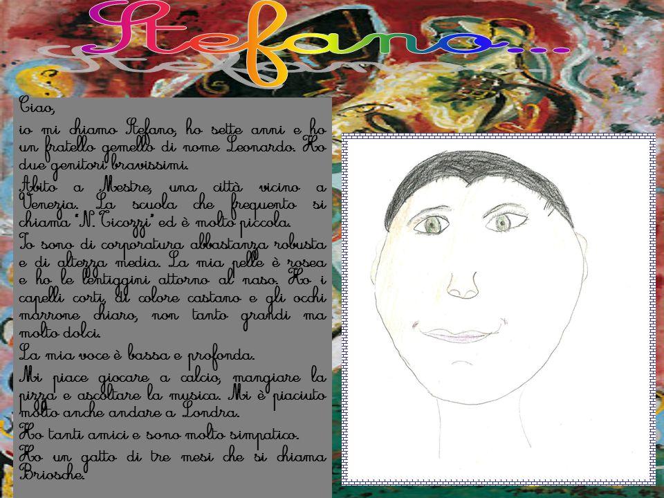 Ciao, io mi chiamo Stefano, ho sette anni e ho un fratello gemello di nome Leonardo. Ho due genitori bravissimi. Abito a Mestre, una città vicino a Ve