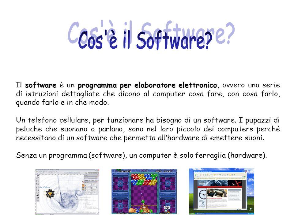 softwareprogramma per elaboratore elettronico Il software è un programma per elaboratore elettronico, ovvero una serie di istruzioni dettagliate che d