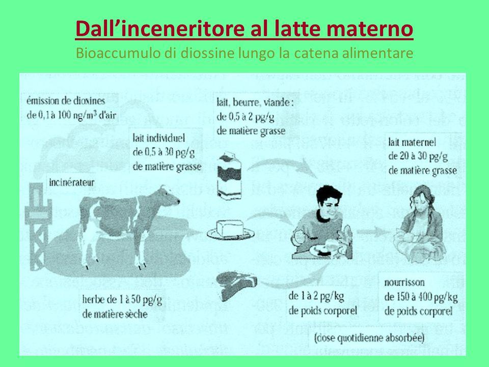 Dallinceneritore al latte materno Bioaccumulo di diossine lungo la catena alimentare