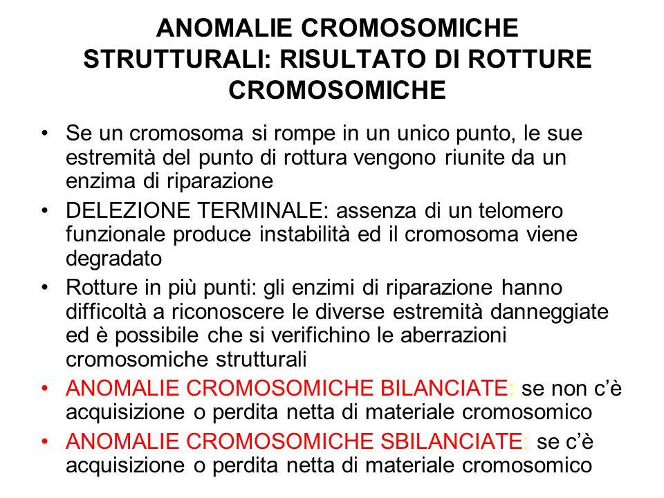 ANOMALIE CROMOSOMICHE STRUTTURALI: RISULTATO DI ROTTURE CROMOSOMICHE Se un cromosoma si rompe in un unico punto, le sue estremità del punto di rottura