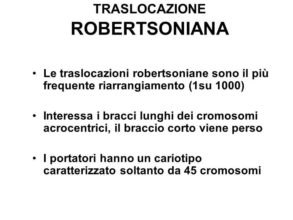 Le traslocazioni robertsoniane sono il più frequente riarrangiamento (1su 1000) Interessa i bracci lunghi dei cromosomi acrocentrici, il braccio corto