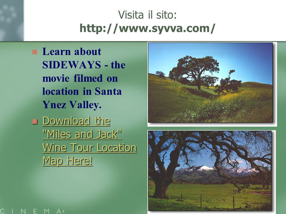 Visita il sito: http://www.syvva.com/ Learn about SIDEWAYS - the movie filmed on location in Santa Ynez Valley. Download the
